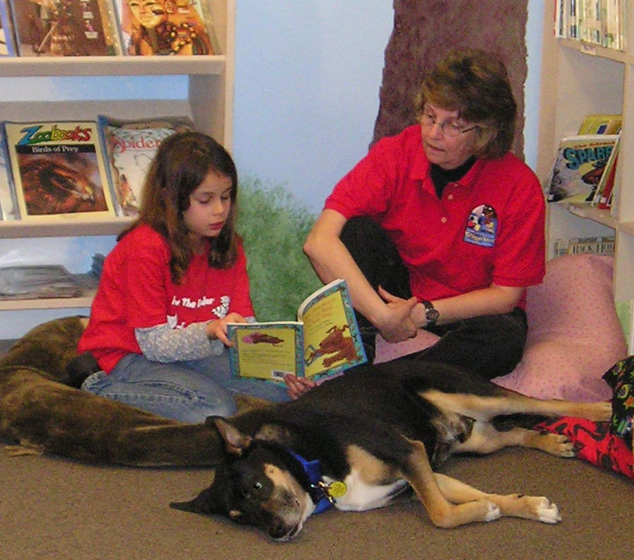 therapy dogs essay