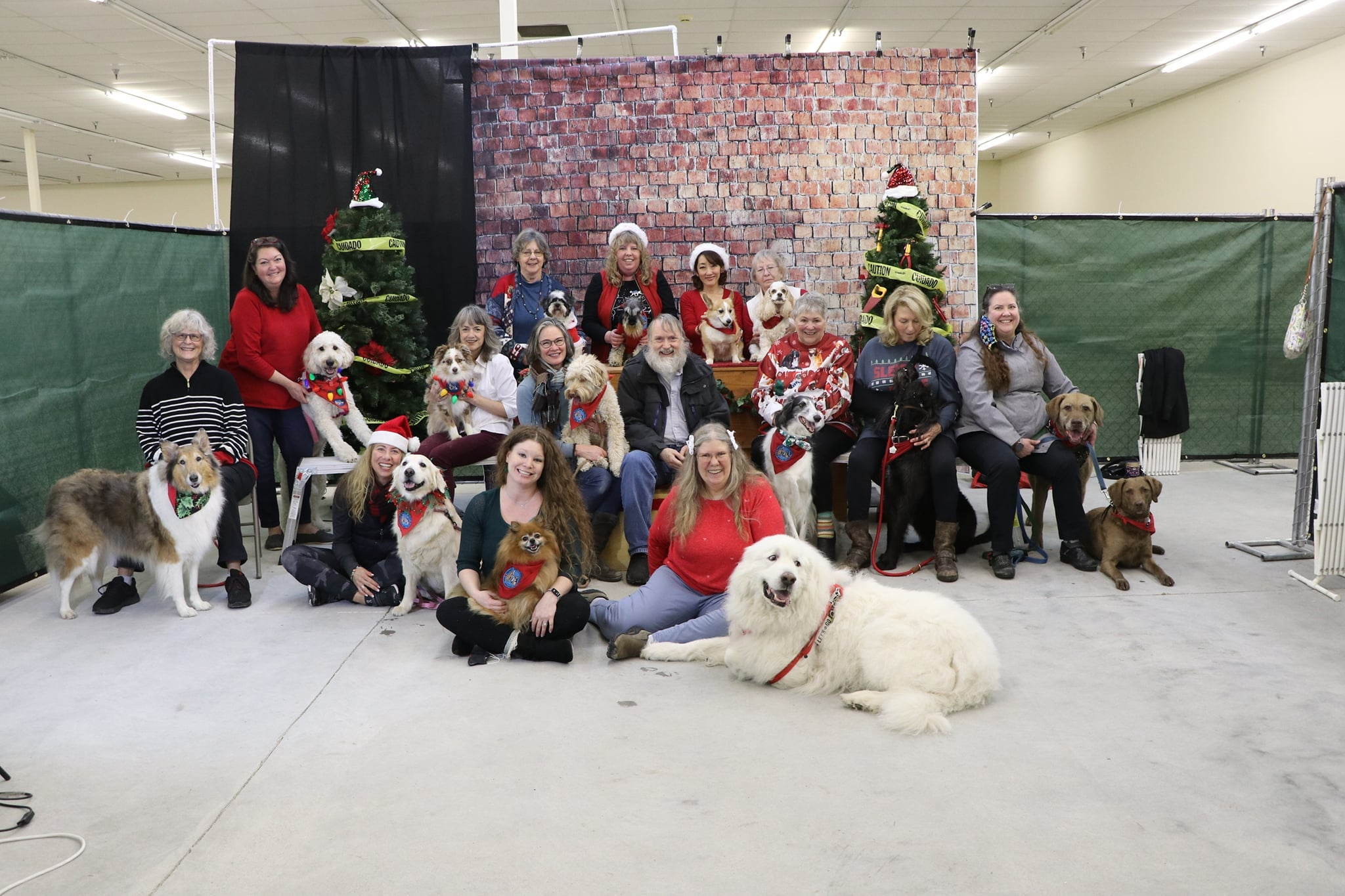 Therapy Dogs International